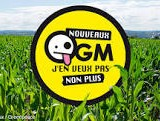 NON aux OGM